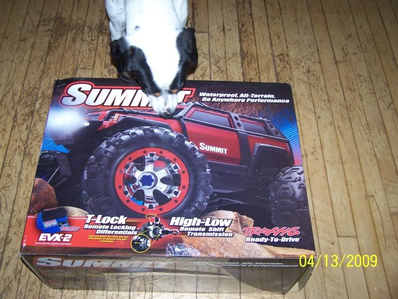 Kid's new Toy Summit