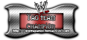 Tag Team Champion