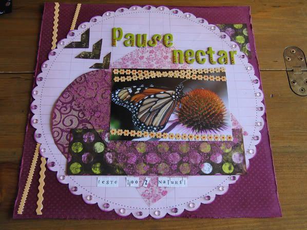 28 Nov : mes dernieres pages Pausenectarred