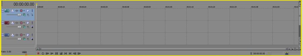 Sony Vegas Basics. (For me at least) TrackShot