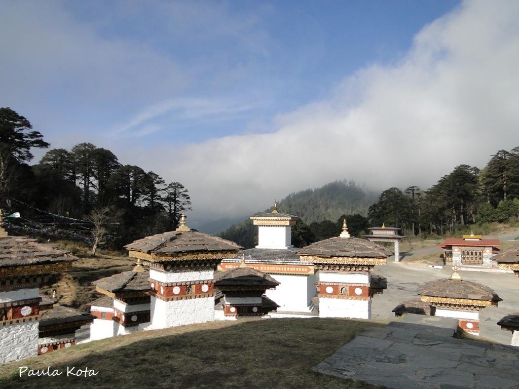 Himalaias ( Sikkim - Bhutan) 2013 - Página 2 DSC06246r