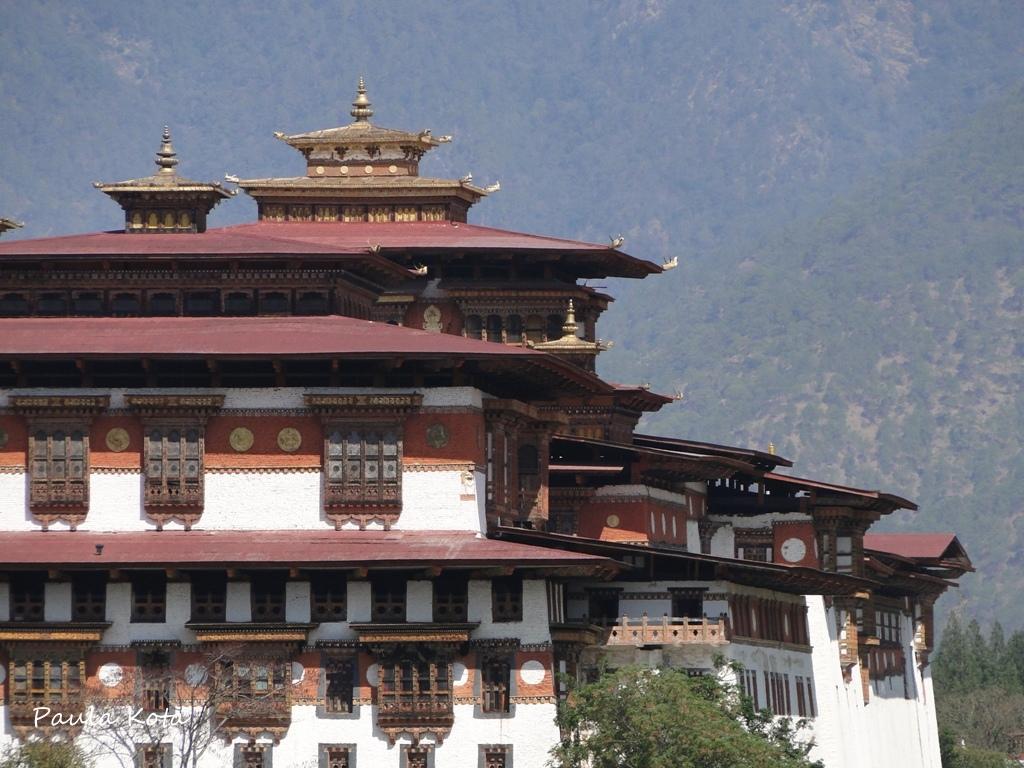 Himalaias ( Sikkim - Bhutan) 2013 - Página 2 DSC06258r