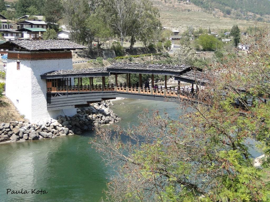 Himalaias ( Sikkim - Bhutan) 2013 - Página 2 DSC06313r