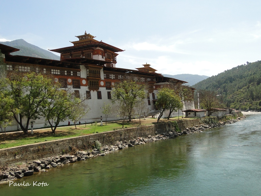 Himalaias ( Sikkim - Bhutan) 2013 - Página 2 DSC06327r