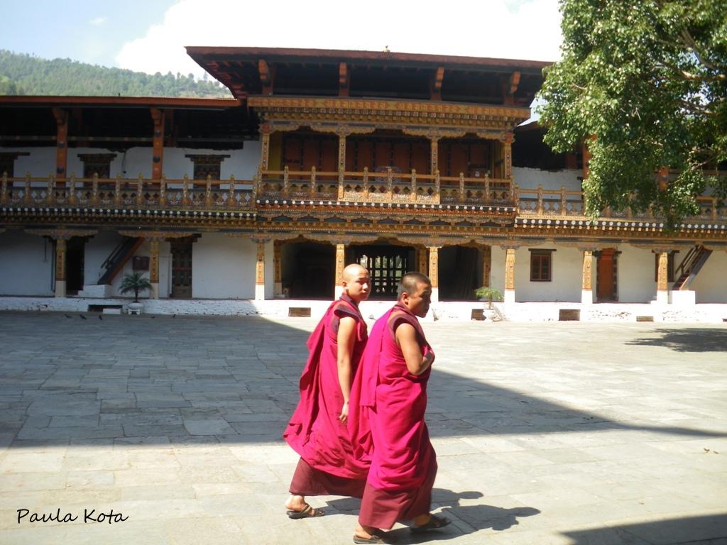 Himalaias ( Sikkim - Bhutan) 2013 - Página 2 IMGP3454r