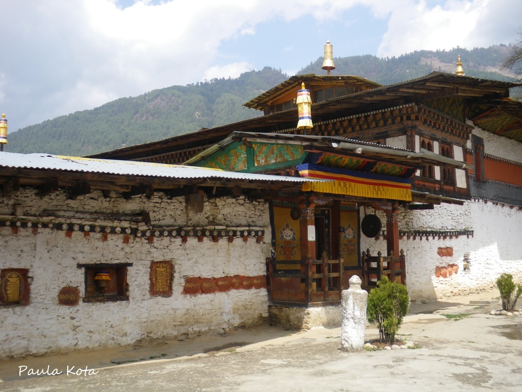 Himalaias ( Sikkim - Bhutan) 2013 - Página 2 IMGP3731r