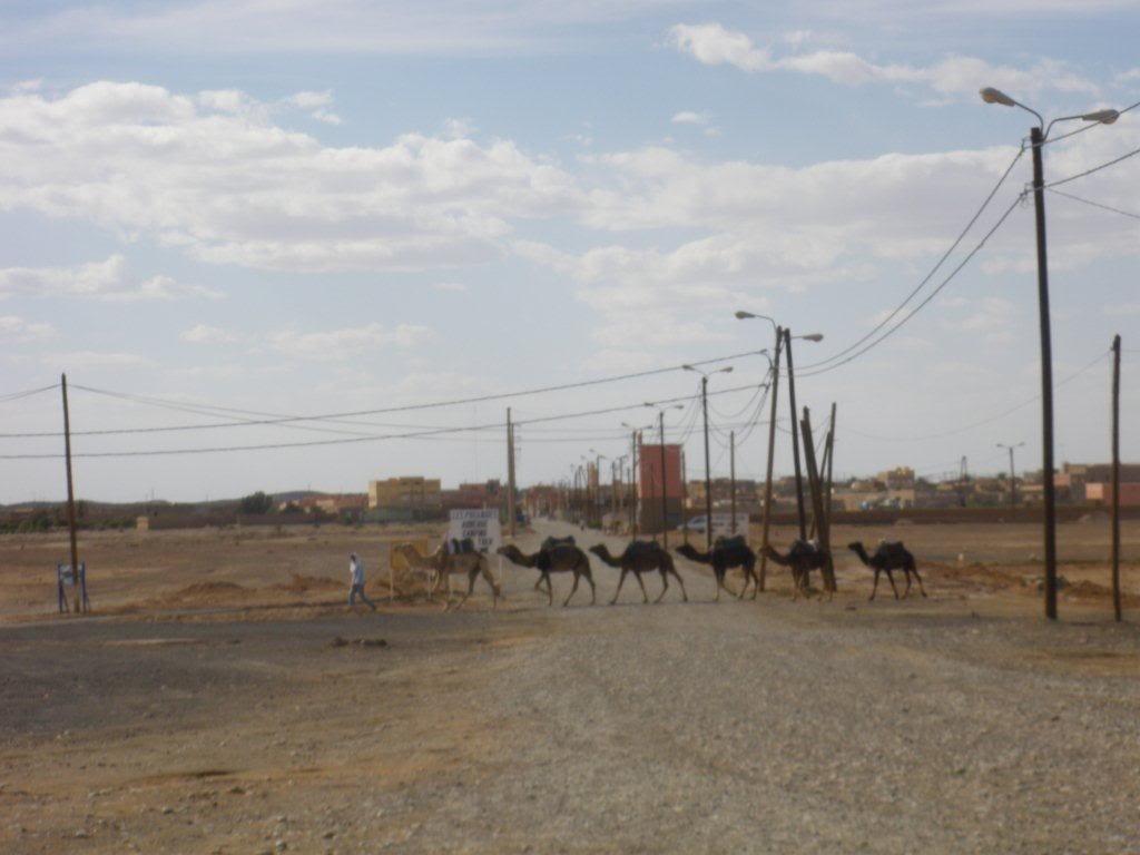 marrocos - Na Terra do Sol Poente - Viagem a solo por Marrocos IMGP0218-1