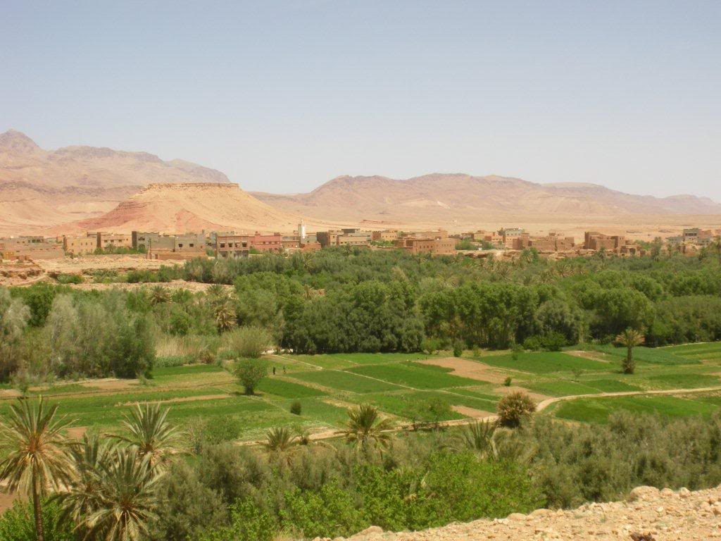 marrocos - Na Terra do Sol Poente - Viagem a solo por Marrocos - Página 2 IMGP0270