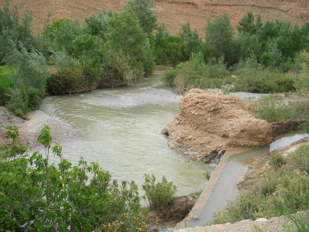 marrocos - Na Terra do Sol Poente - Viagem a solo por Marrocos - Página 2 IMGP0351