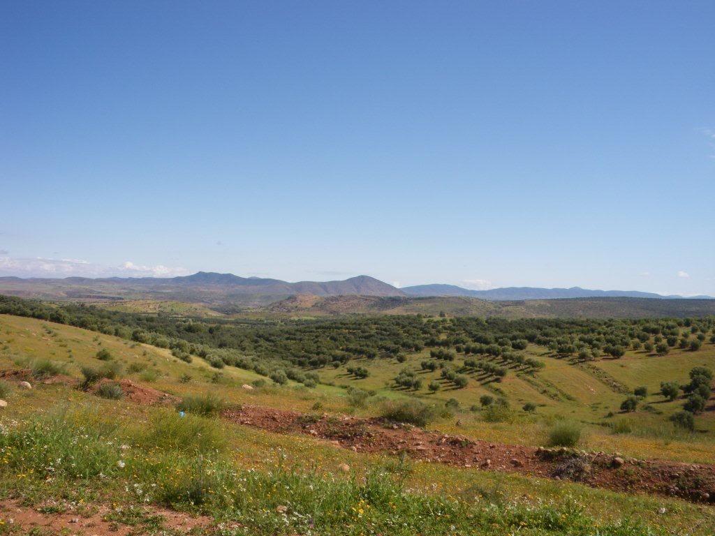 marrocos - Na Terra do Sol Poente - Viagem a solo por Marrocos - Página 2 IMGP0415