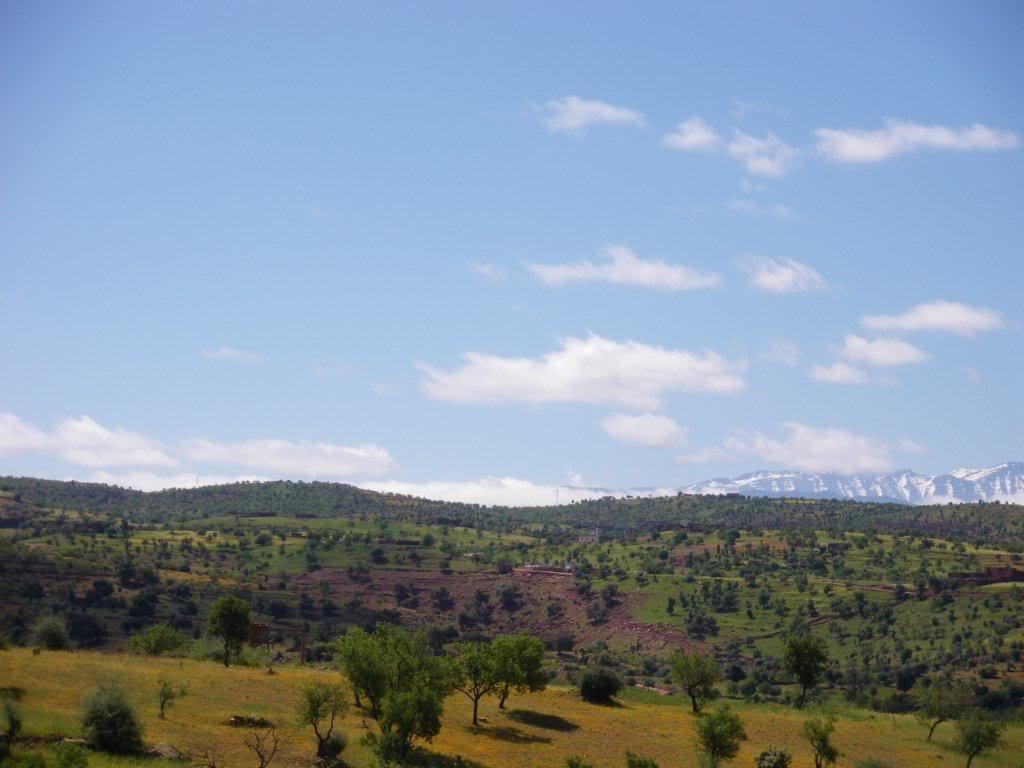 marrocos - Na Terra do Sol Poente - Viagem a solo por Marrocos - Página 2 IMGP0421