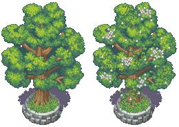 Luna Xp RTP Town-Trees