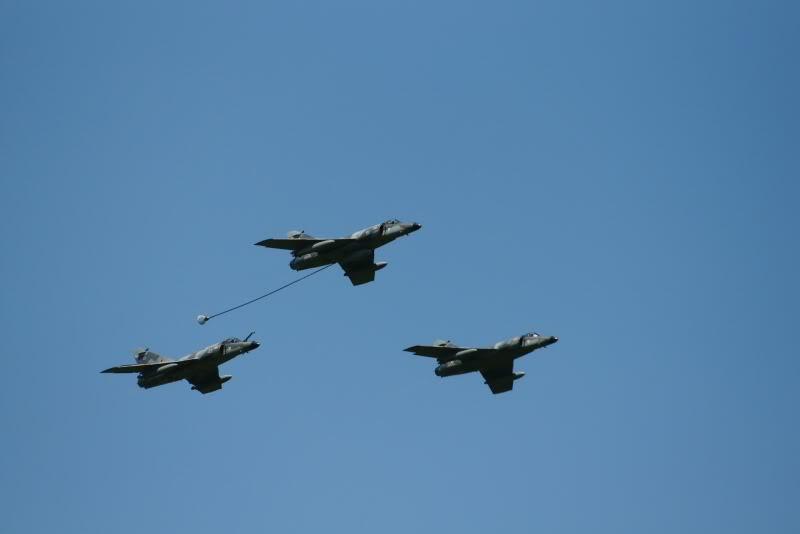 Zavions qui volent DSC05444