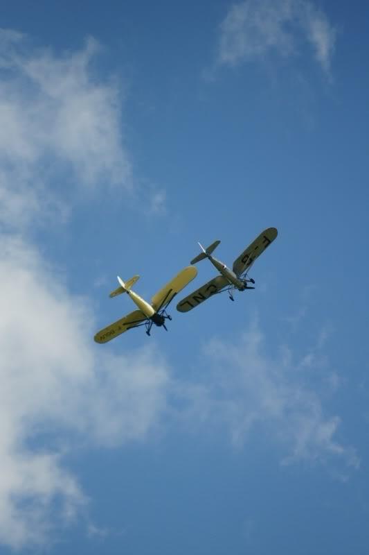 Zavions qui volent DSC05628