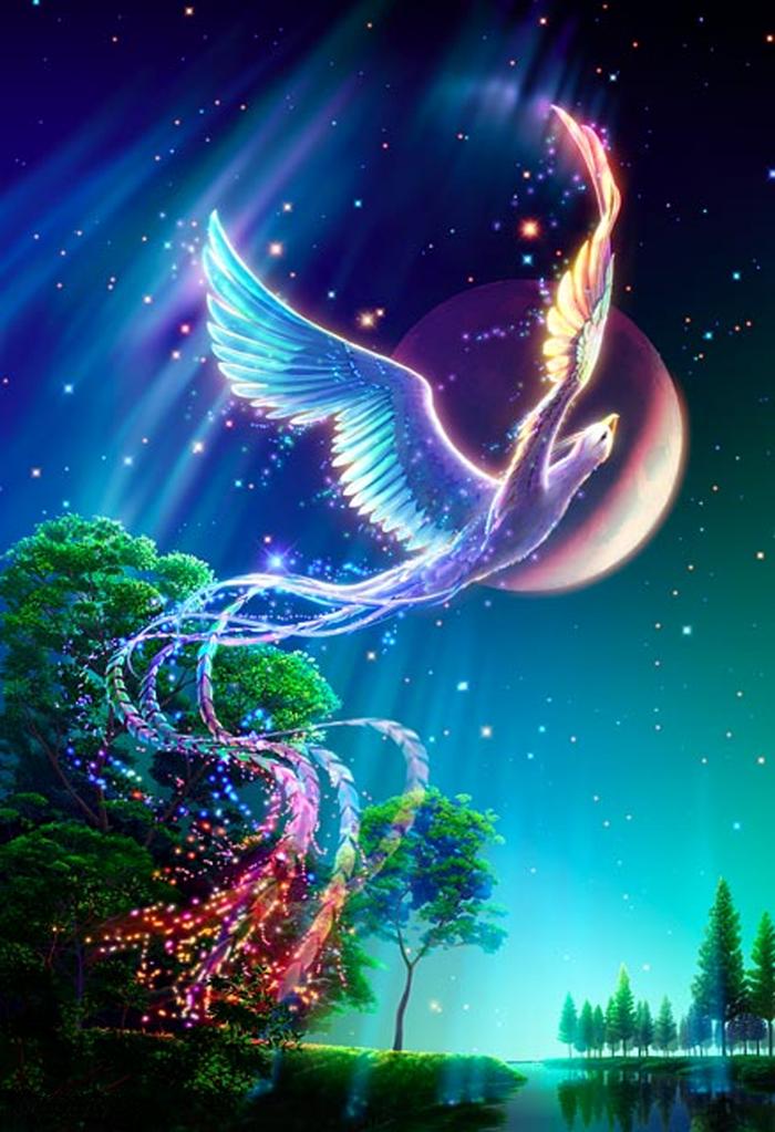 Ichiru's OC Central Kagaya-StarryTales-Phoenix