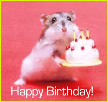 Srecan rodjendan Broju Jedan Birthday-comments-216