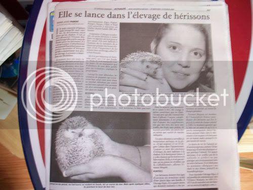Article de journal et maintenant reportage a la télé ! - Page 2 100_0492