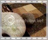 Les 3 pupuces !! Th_102_1873