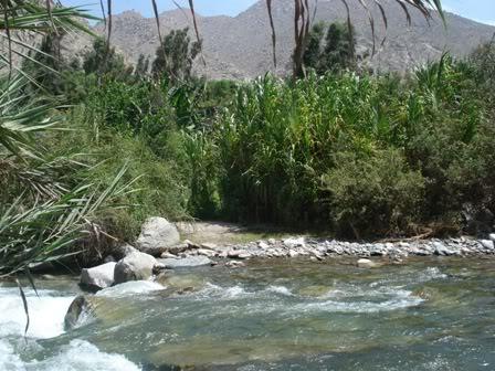 Cieneguilla - Lima - PERU DSC08306