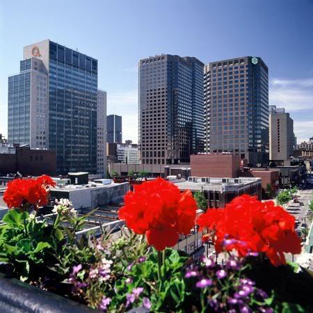 Красивые фото  Монреаля и Квебека A-view-of-downtown-from
