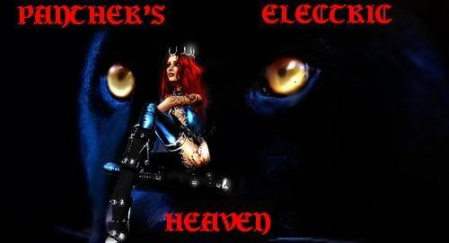 Panthers Electric Heaven GetAttachment-1