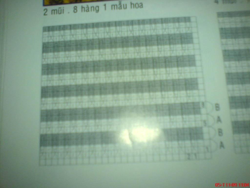 mình hỏi về chart đan này DSC00932
