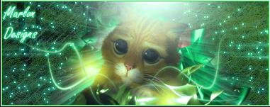Marlon Gallery Catstyle