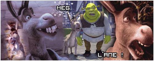 Commande > Meg Meg