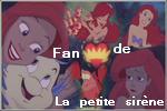 mes blogs Ariel2copie
