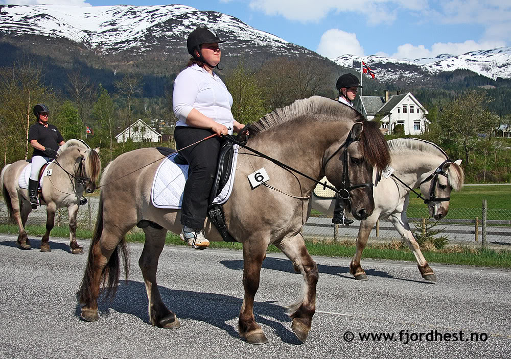 Les robes du Fjord Gray2
