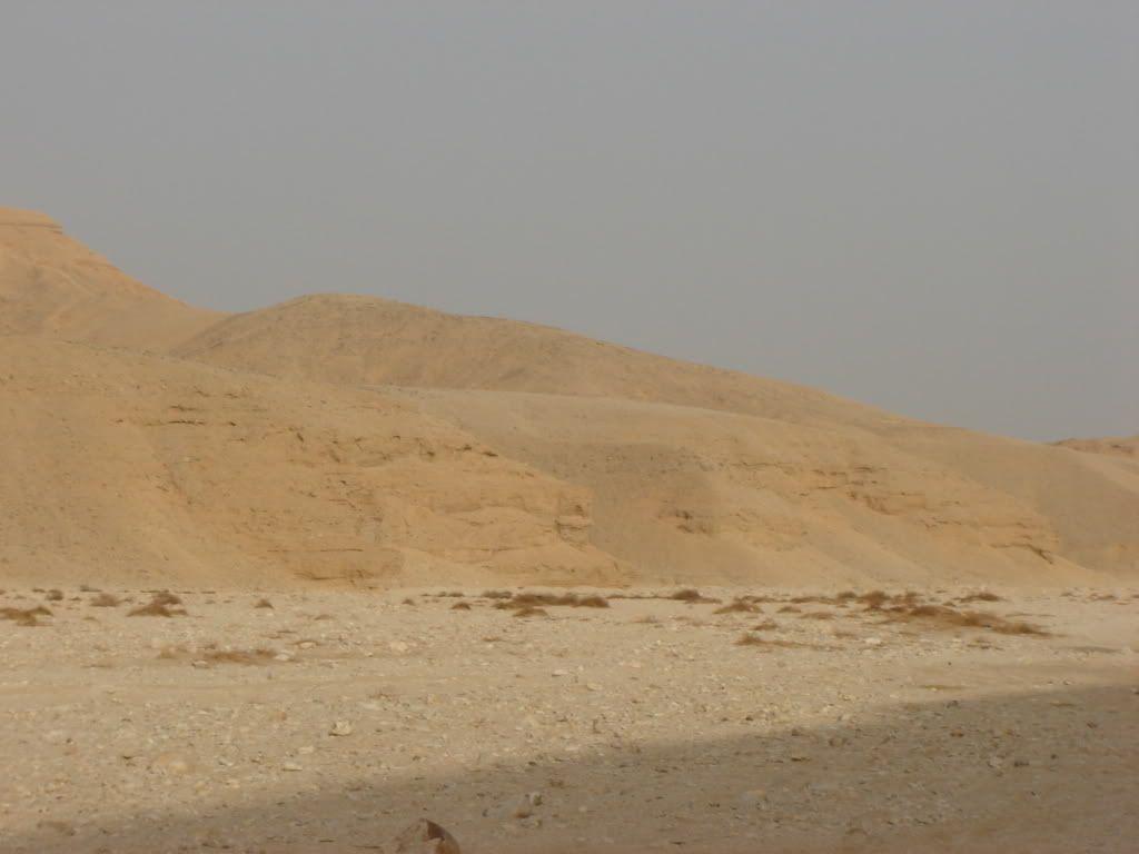 Désert Egyptien DSC04092