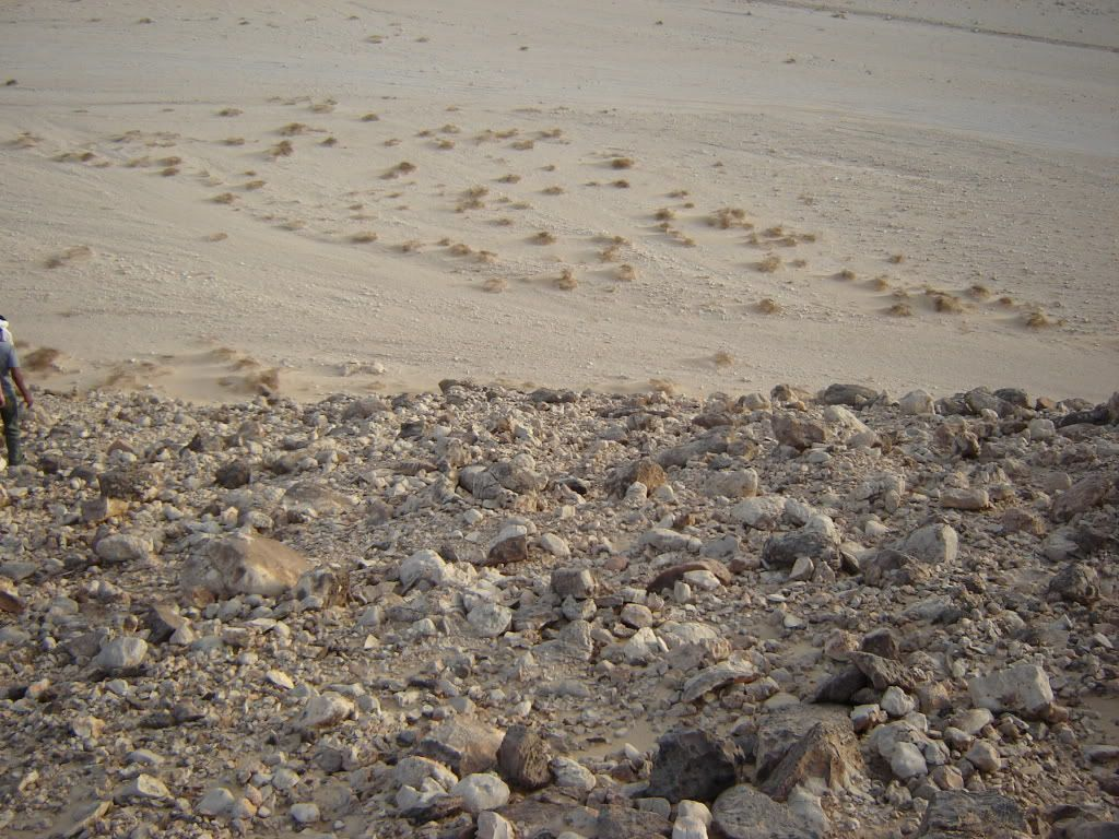 Désert Egyptien DSC04100