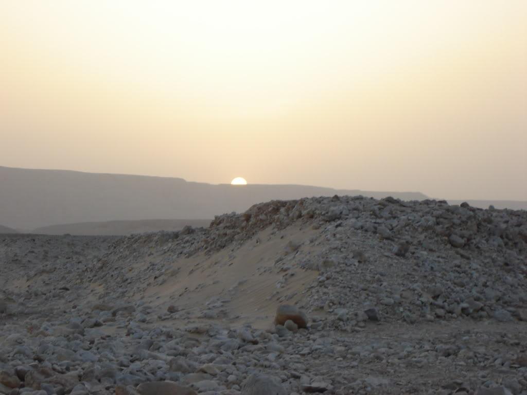 Désert Egyptien DSC04106