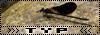 Logos TYP 17459237ky8copie