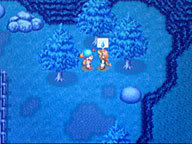 hướng dẫn havest moon DS Flora_blue2