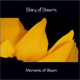 Diary of Dreams  99_moments