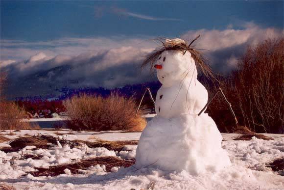 Kako se osjećam -u slikama  - Page 5 Snowman2