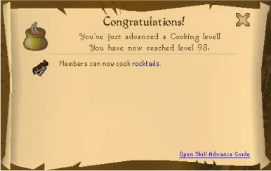 Luke's Level Log and other st00f 93COOK