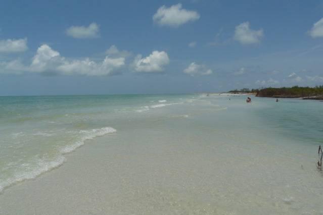 Notre journée plage sauvage, côte ouest P1080547
