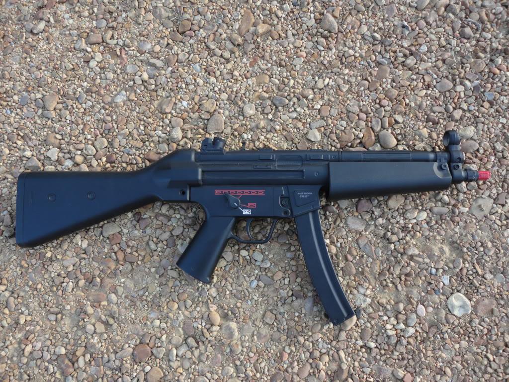 Gun Sale DSC00918