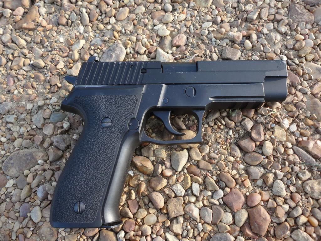 Gun Sale DSC00920