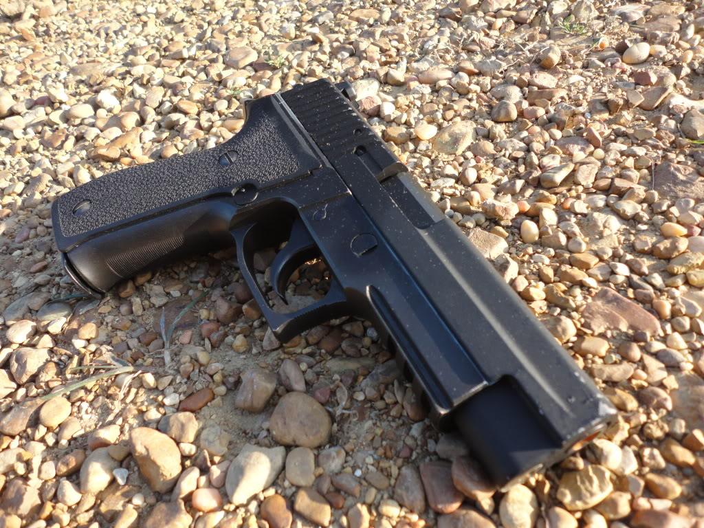 Gun Sale DSC00921