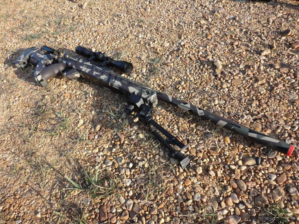 Gun Sale DSC00926