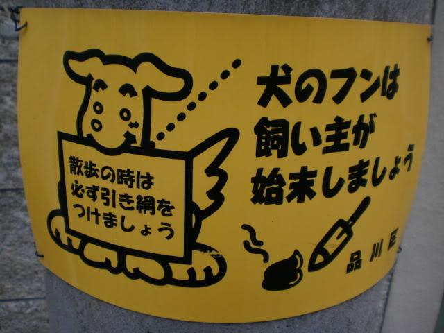 JUMP JUMP TOKYO PC250056