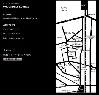 06/11/2010 : SOIREE ELECTRO : PUZZLES @UNDER DEER LOUNGE 01