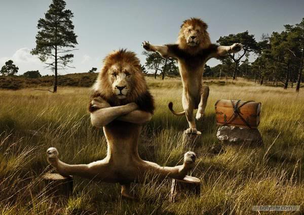 Crank that Fred Lion