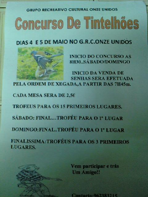 Concurso de Tentilhôes-C.R.Onze Unidos-Lisboa 130320_212200