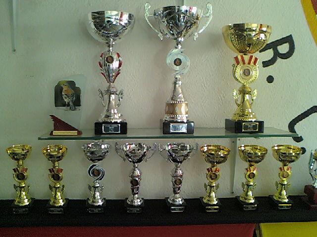 Concurso de Tentilhôes-C.R.Onze Unidos-Lisboa 130425_160818