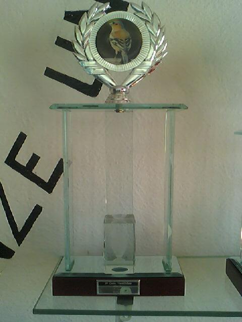 Concurso de Tentilhôes-C.R.Onze Unidos-Lisboa 130425_160955