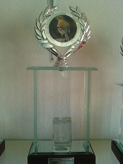 Concurso de Tentilhôes-C.R.Onze Unidos-Lisboa 130425_161006